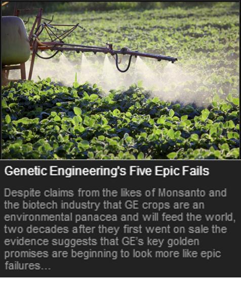 GMO Fails 1